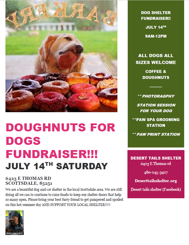 Doughnuts for Dogs Fundraising Event flyer